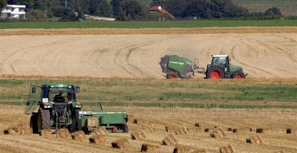 Calendar APIA – septembrie 2021. Termene limită pentru fermieri